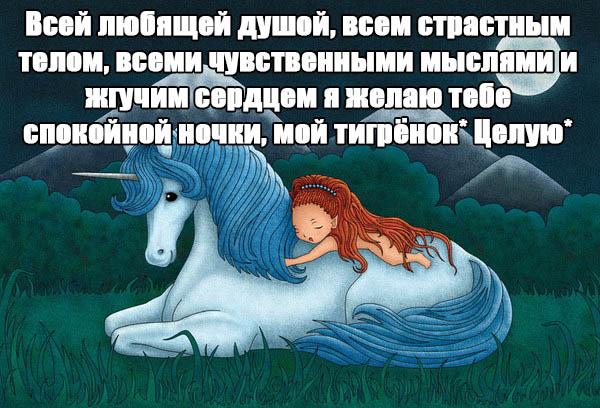 Пожелания спокойной ночи своими словами - красивые и прикольные 1