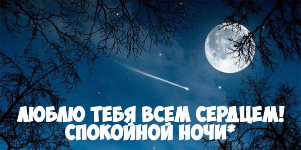 Пожелания спокойной ночи своими словами - красивые и прикольные 3