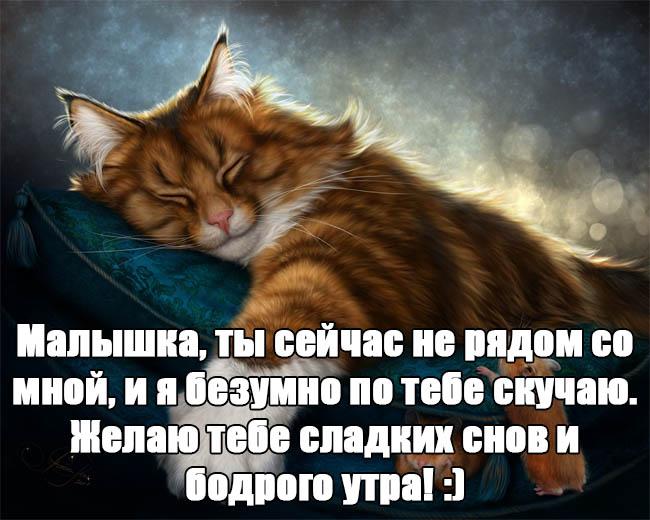 Пожелания спокойной ночи своими словами - красивые и прикольные 6