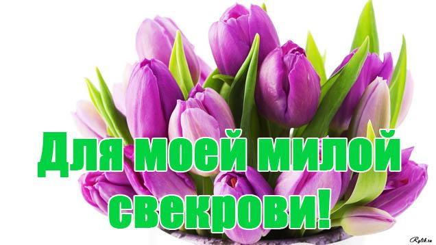 Поздравления С Днем Рождения свекрови от невестки - красивые, прикольные 12