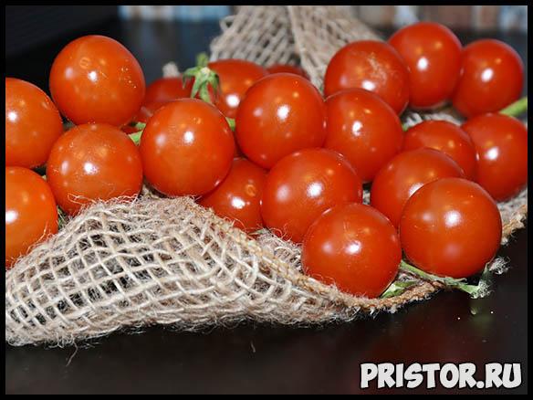 Почему не завязываются помидоры в теплице - советы и рекомендации 3