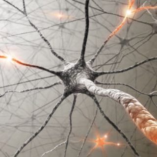 Рассеянный склероз - симптомы, причины, лечение, основные типы 1