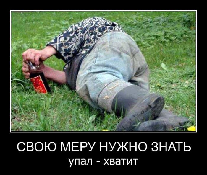 Смешные и ржачные новые демотиваторы - прикольные, свежие, 2017 12