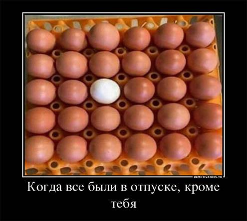 Смешные и ржачные новые демотиваторы - прикольные, свежие, 2017 2
