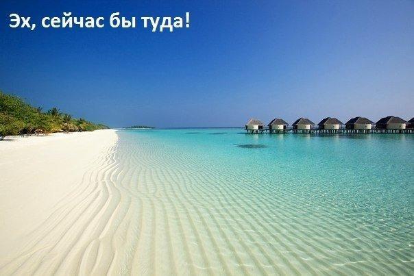 СИОжегов НЮШведова Толковый словарь русского языка СЯ