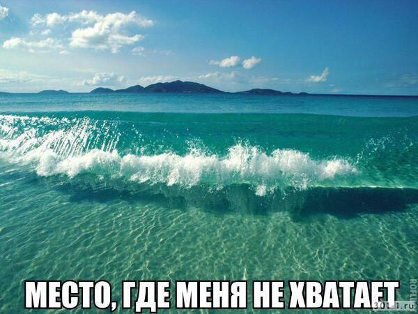 Смешные картинки про море - прикольные, ржачные и веселые 2