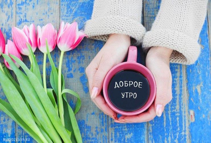 Открытки с тюльпанами с добрым утром 12