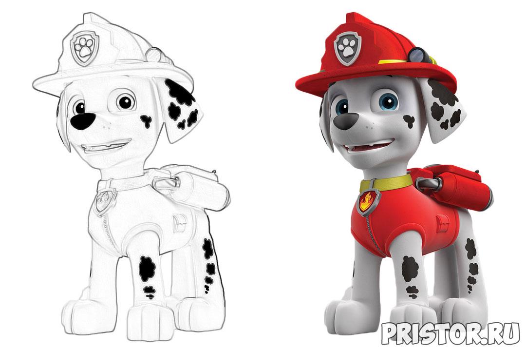 Щенячий патруль раскраска для детей - прикольные и красивые 1