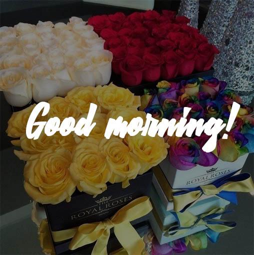 Good morning картинки с надписями - красивые и прикольные 4