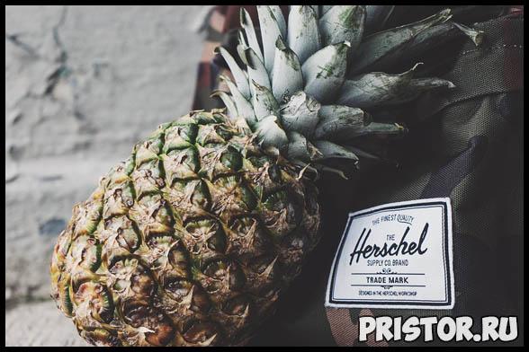 Ананас польза и вред для здоровья человека - употребление фрукта 1