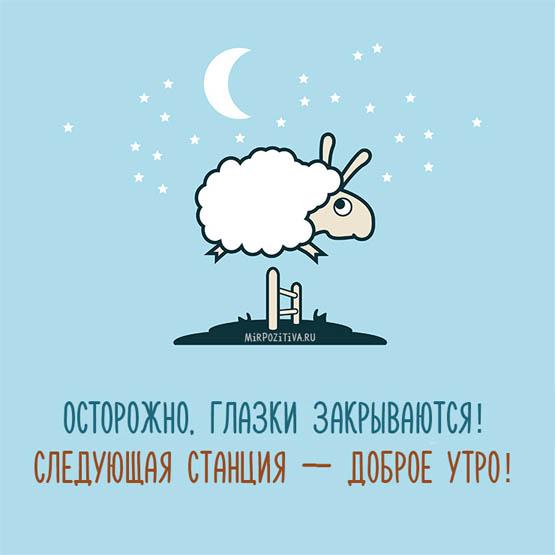 Веселые и смешные пожелания спокойной ночи - скачать бесплатно 3