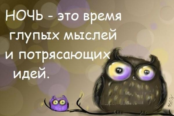 Веселые и смешные пожелания спокойной ночи - скачать бесплатно 7