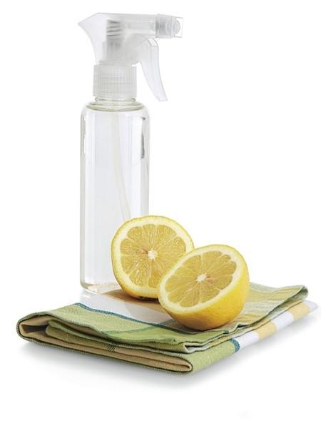Домашние чистящие средства своими руками - чистота в доме 1