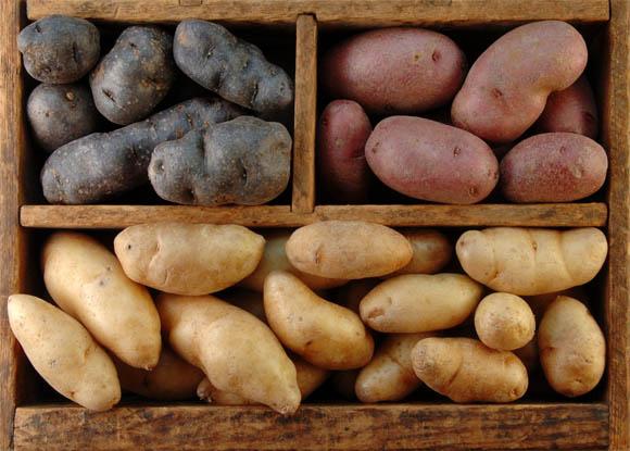 Как хранить картошку зимой - главные особенности и рекомендации 2