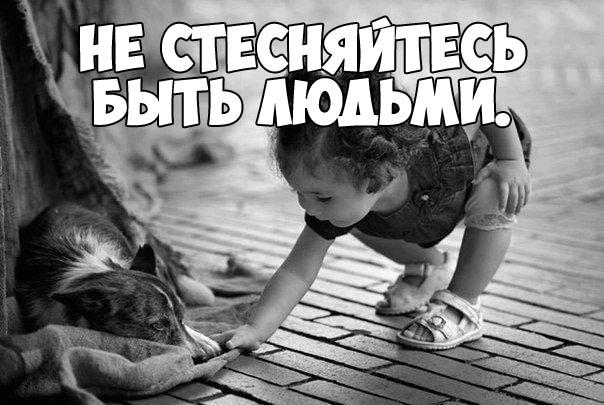 Красивые афоризмы и высказывания про жизнь - смотреть в картинках 4