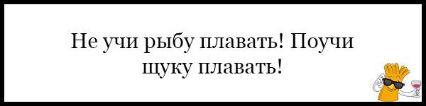 Красивые и прикольные пословицы о школе - читать бесплатно, 2017 1