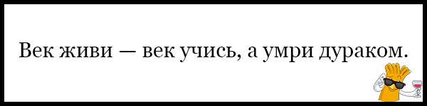 Красивые и прикольные пословицы о школе - читать бесплатно, 2017 19