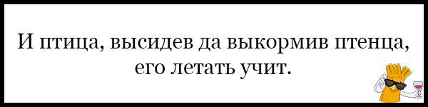 Красивые и прикольные пословицы о школе - читать бесплатно, 2017 6