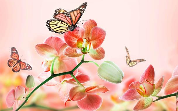 Красивые нарисованные картинки цветов - удивительные и красочные 13