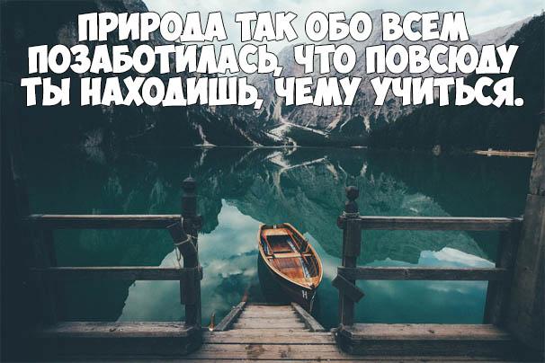Красивые цитаты про природу - мудрые, интересные и со смыслом 1