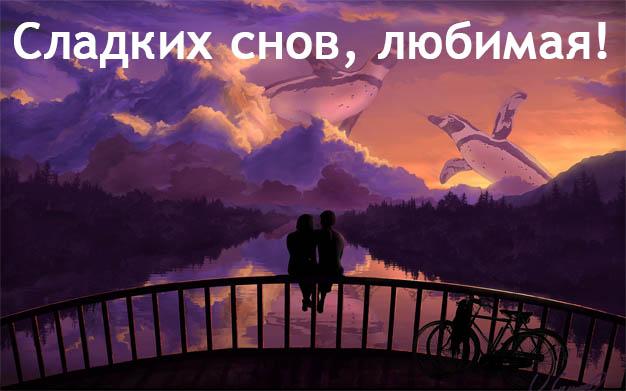Пожелания спокойной ночи любимой девушке - своими словами, красивые 6