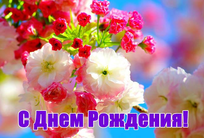 Поздравления с юбилеем свекрови от невестки - красивые и прикольные 5