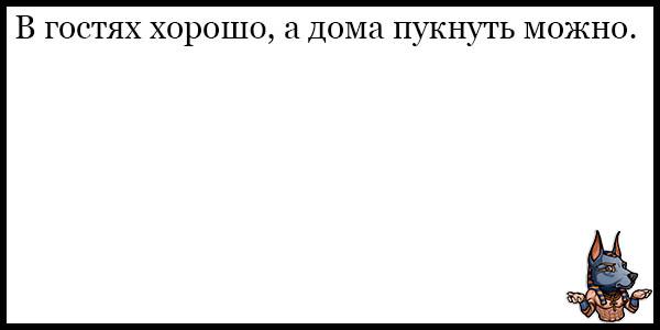 Смешные и веселые анекдоты - короткие и свежие, подборка №33 16