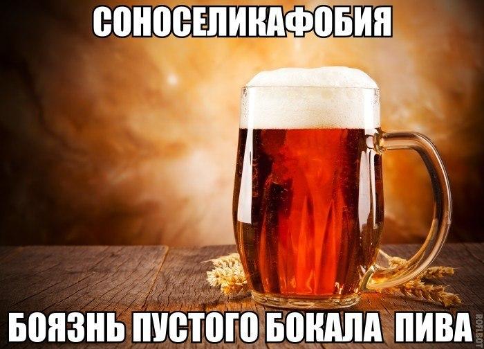 Смешные картинки про алкоголь - самые смешные и ржачные, 2017 5