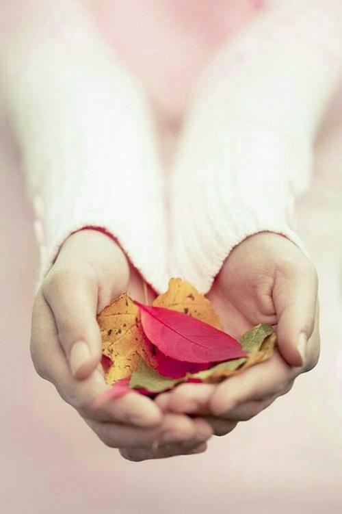 Картинки на аву в ВК для девочек - красивые, прикольные и со смыслом 11
