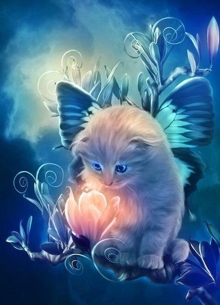 Картинки на аву кошки и котики - самые прикольные и красивые 13