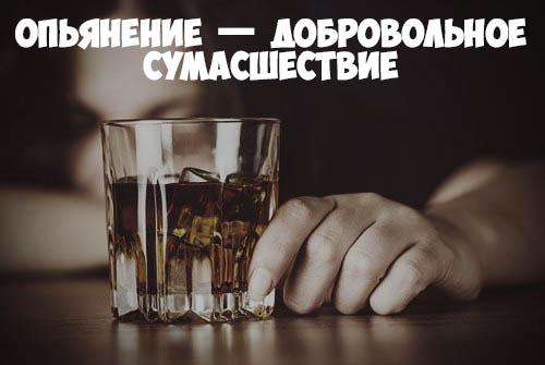 Красивые и прикольные цитаты про алкоголь - со смыслом, интересные 10