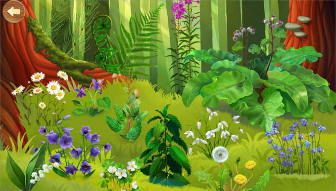 Красивые картинки леса для детей - смотреть, скачать бесплатно 9