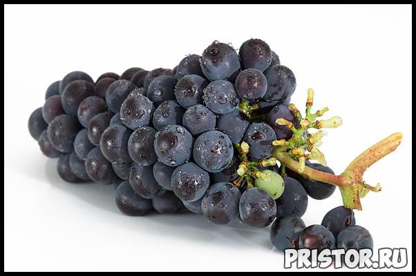 Красный или белый виноград - какой выбрать, чтобы быть здоровым 2