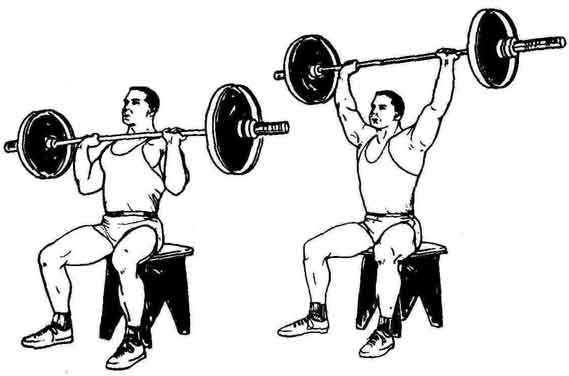 Лучшие и эффективные упражнения на плечи дома и в зале 1