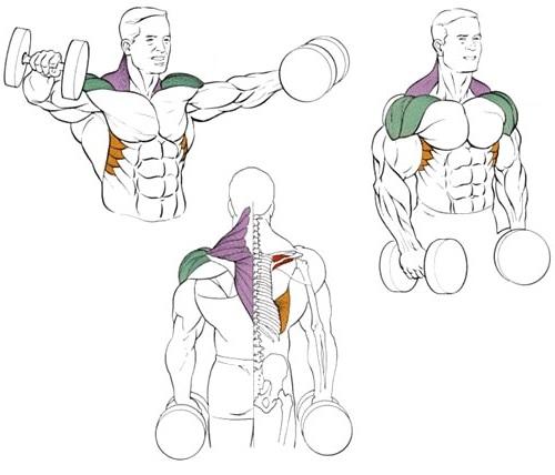 Лучшие и эффективные упражнения на плечи дома и в зале 4