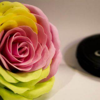 Мыльные цветы - красивые и удивительные фотографии, картинки 5
