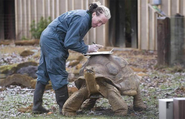 Позитивные и прикольные фото из зоопарка - смотреть бесплатно 9