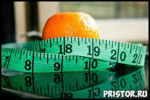 Самые эффективные диеты для похудения в домашних условиях - список лучших 1