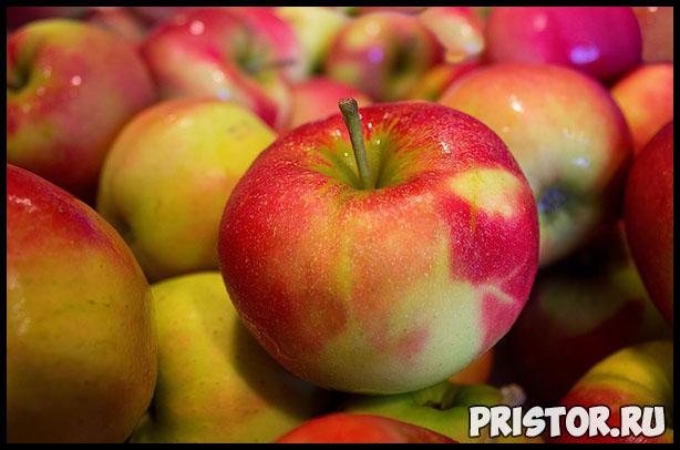 Как выбрать правильное яблоко и хранить их - основные рекомендации 1