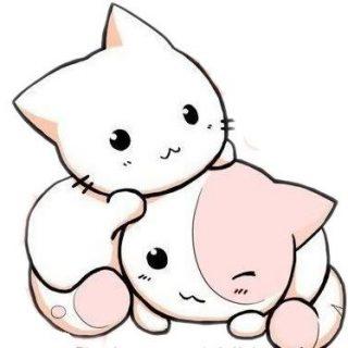 Картинки котиков для срисовки - очень интересные, красивые и легкие 5