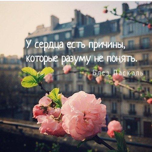 Красивые и мудрые цитаты про верность и измену - подборка 2017 6