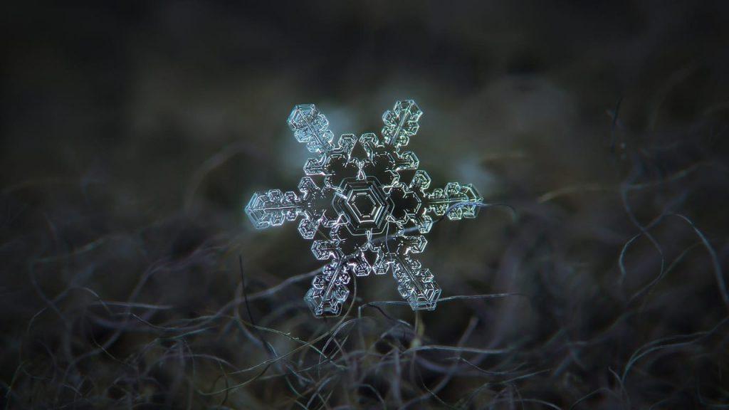 Макрофотография снежинок - самые удивительные и невероятные фото 1