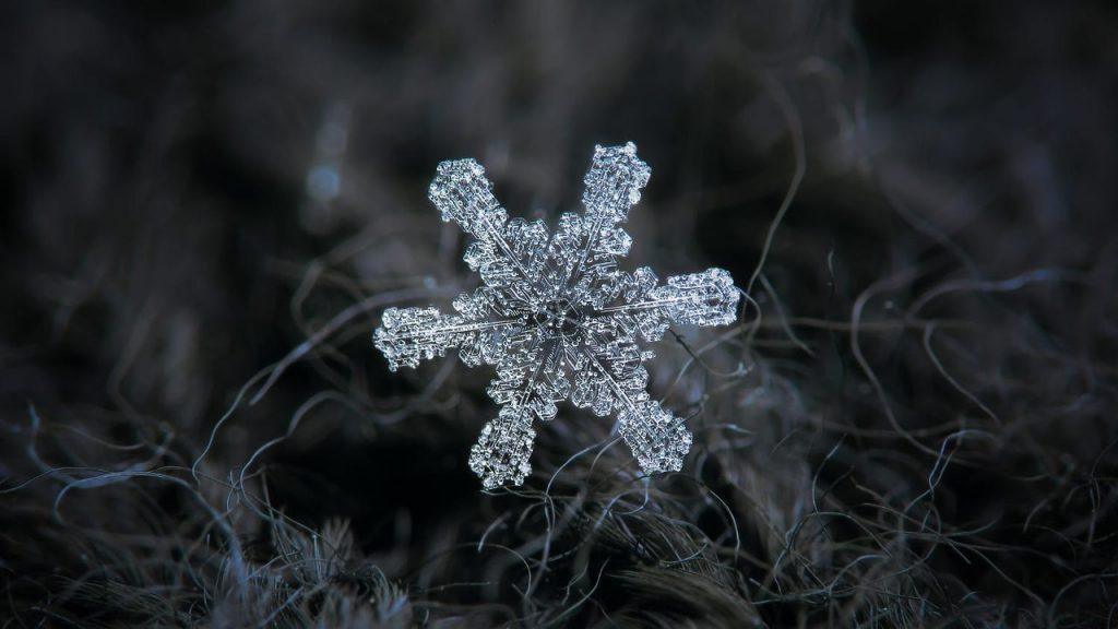 Макрофотография снежинок - самые удивительные и невероятные фото 10