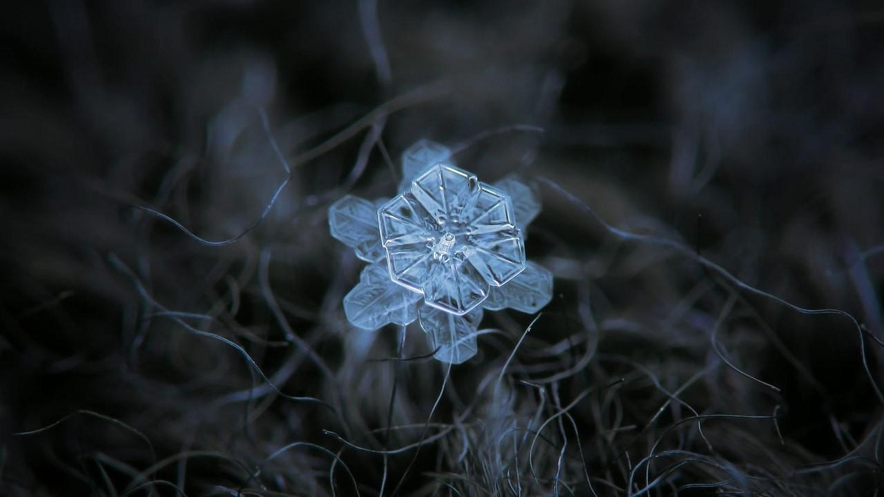 Макрофотография снежинок - самые удивительные и невероятные фото 11