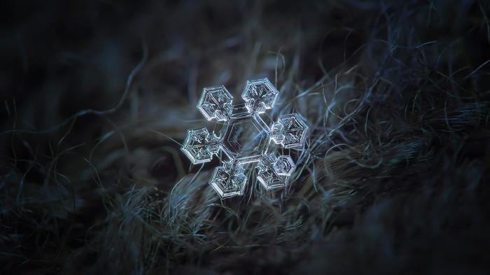 Макрофотография снежинок - самые удивительные и невероятные фото 13