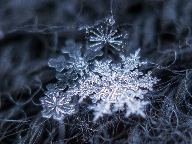 Макрофотография снежинок - самые удивительные и невероятные фото 2