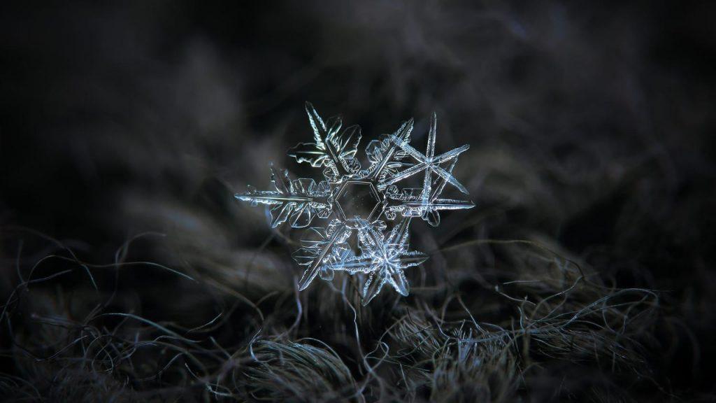 Макрофотография снежинок - самые удивительные и невероятные фото 7