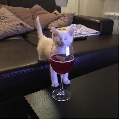 Смешные будние приколы про алкоголь - самые новые и свежие №9 14