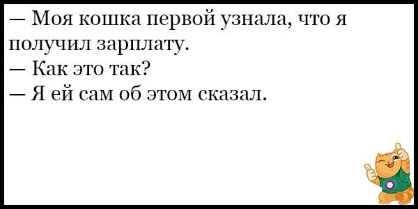 Смешные и прикольные анекдоты про котов и кошек - подборка №59 3