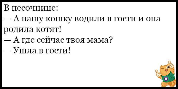 Смешные и прикольные анекдоты про котов и кошек - подборка №59 7